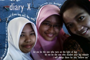 diaryX 6